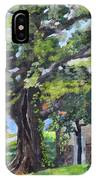 Tree At Cartecay IPhone Case