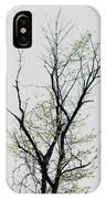 Tree Series Five IPhone Case