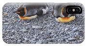 Two King Penguins By Alan M Hunt IPhone Case