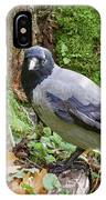 Under The Oak Tree. Hooded Crow IPhone Case