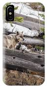 w75 IPhone Case by Joshua Able's Wildlife
