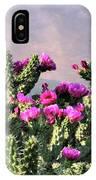 Walking Stick Cactus And Wren IPhone X Case