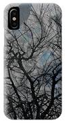 Wasteway Willow 04 IPhone Case