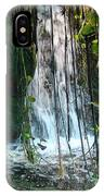 Water Feature  IPhone Case