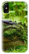 Wearin O' The Green IPhone Case
