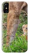 What Could Be Cuter Than A Baby Lion Cub? IPhone Case