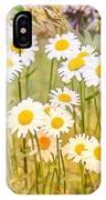 Wild White Daisies IPhone Case