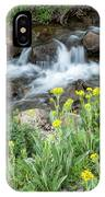 Wildflower Overlook IPhone Case by Denise Bush
