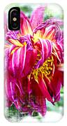 Wilted Dahlia. IPhone Case