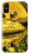 Wood Duck Pair And Their Reflection IPhone Case