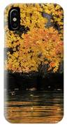 Yellow On Water IPhone Case by Dan Friend