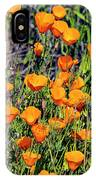 Yellow Poppies Of California IPhone Case