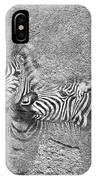 Zebras No 02 IPhone Case