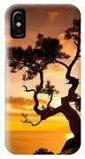 Zen Is A Tree On The Cliff Rocks And IPhone Case