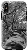 Birch Tree IPhone X Tough Case