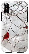 Birds Of A Feather IPhone X Tough Case