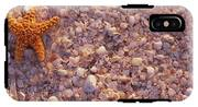 Starfish On The Beach, Lovers Key State IPhone X Tough Case