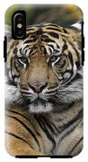 Sumatran Tiger IPhone X Tough Case