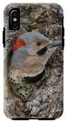 Northern Flicker In Nest Cavity Alaska IPhone X Tough Case