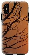 A Hummingbird Setting In A Tree At Sunset IPhone X Tough Case