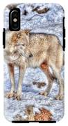 A Wolf In Winter IPhone X Tough Case