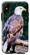 Beautiful Bald Eagle IPhone X Tough Case