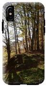 Beech Trees - Autumn IPhone X Tough Case