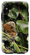 Bird In The Ivy IPhone X Tough Case