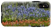 Bluebonnets Paintbrush And Prickly Pear IPhone X Tough Case