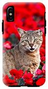 Cat In Red IPhone X Tough Case