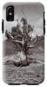 Cedar Landscape IPhone X Tough Case