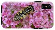 Common Tiger Hoverfly IPhone X Tough Case