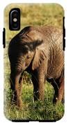 Elephant Calf IPhone X Tough Case