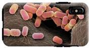 Escherichia Coli Bacteria IPhone X Tough Case