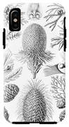 Examples Of Coniferae From Kunstformen IPhone X Tough Case