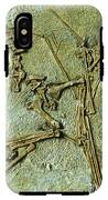 Fossil Remains Of The Pterodactyl IPhone X Tough Case