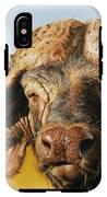 African Buffalo IPhone X Tough Case
