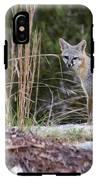 Grey Fox At Rest IPhone X Tough Case