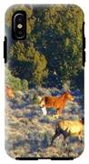 Harmony In Nature IPhone X Tough Case