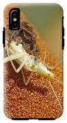 Jumping Spider With Cricket IPhone X Tough Case