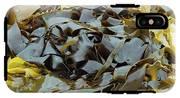 Kelp (ecklonia Radiata) IPhone X Tough Case