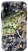 Leopard Frog In Gravel II IPhone X Tough Case
