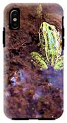 Leopard In The Water IPhone X Tough Case