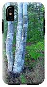 Lone Birch In The Maine Woods IPhone X Tough Case