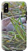 Looking For Dinner IPhone X Tough Case