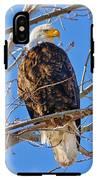 Majestic Bald Eagle IPhone X Tough Case