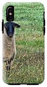 Middle Child - Blackfaced Sheep IPhone X Tough Case