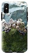 Mossy Barnacles IPhone X Tough Case