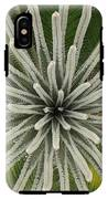 My Giant Sago Palm IPhone X Tough Case