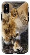 Nuzzling Lions IPhone X Tough Case